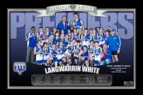 2013 F&DJFL Premiership Prints
